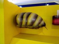 Bienenhinterleib in der Ausstellung Market Hallstadt