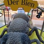 """""""Der Bien"""" in der Ausstellung"""