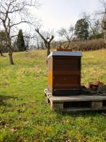 Bienenbeute in Wildensorg am Rinnersteig