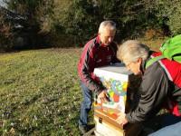 ankunft des Sternwartbienenablegersn