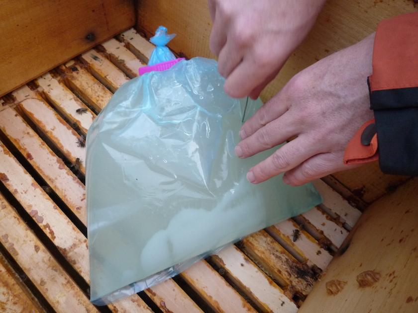 Plastikbeutel mit Zuckerwassernährlösung