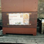 Bienenpatenvolk von Carmen Dechant