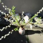 Ein Weidenkätzchenstrauß treibt neu aus
