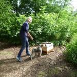 Meike Winnemuth mit Fiete an ihrem Bienenpatenvolk, Bamberg, Erba-Insel