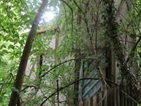 Geheimnisvolles Turmfachwerkhaus in Bamberg