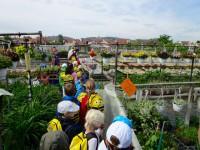 Schulkinder zum Bienenunterricht in der Hofstadt-Gärtnerei