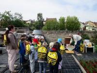In sicherer Entfernung vor dem Bienenstock