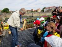 Reinhold zeigt den Erstklässlern eine Bienenwabe