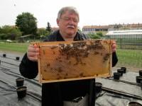Rektor Norbert Bocksch mit Bienenwabe