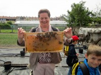Klassenleiterin Judith Endres mit Bienenwabe