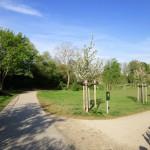 Künftiger Standort der Bienen-InfoWabe im ERBA-Park Bamberg