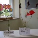 Blumenausstellung der Lichteneicheschule Bamberg