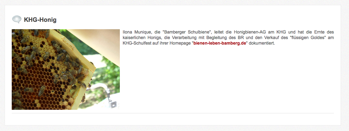 Blogeintrag auf den Webseiten des KHG zur Bienen-AG