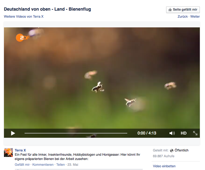 Video TerraX Bienenflug