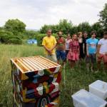 Studentengruppe beim Honigernten