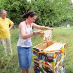 Studierende beim Honigernten