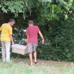 Die Honigernte wird transportiert