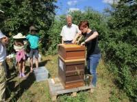 Bienenpatin Christina Michel zieht eine Honigwabe