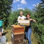 Bienenpatin Christina Michel zeigt eine Honigwabe