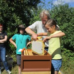 Tonia zieht eine Honigwabe