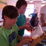 Daniel und Wenzel entdeckeln eine Honigwabe