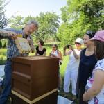 Reinhold Burger zeigt eine Honigwabe