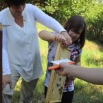 Jessica lernt Bienen abstreifen