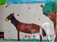 Zeichnung von Tonia, Bienen und Pferde