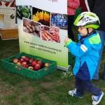Kind vor Unterstützterzelt mit Deko-Äpfeln