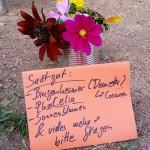 bienenfreundlicher Strauß an der Trachtpflanzenstation mit Beschilderung