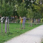 Obstbaumallee mit farbigen Bändern geschmückt