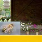 Fensterdeko: Biene und Blumensträußchen