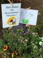 Blumenschmuck aus der Hofstadt-Gärtnerei