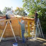 Dachdeckarbeiten Bienen-InfoWabe