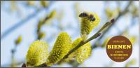 Postkarte Erzählcafé Bienen