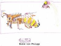 Bienenzeichnung von Philipp