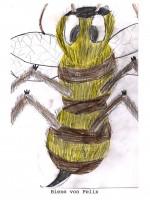 Bienenzeichnung von Felix