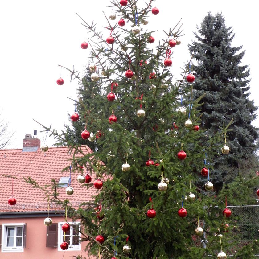 Don Bosco Weihnachtsbaum