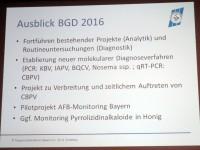 Folie Ausblick BGD 2016