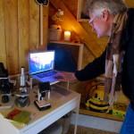 Mikroskope in der Forschungsabteilung der Bienen-InfoWabe (BIWa)
