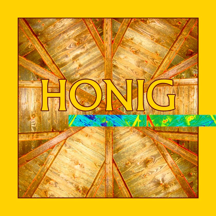 Logo für das Schwerpunktthema Honig der Bienen-InfoWabe