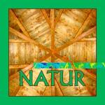 Logo für das Schwerpunktthema Natur der Bienen-InfoWabe
