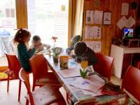 Offenes Haus: Malen und Rästeln in der Bienen-InfoWabe Bamberg