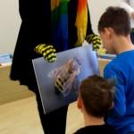 Die Biene im Schulbienenunterricht