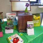 Der Insektentisch in der Stadtbücherei Baunach