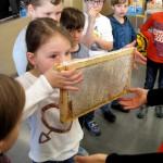 Honigwabe beschnuppern im Schulbienenunterricht
