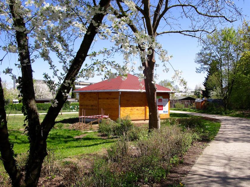 Bienen-InfoWabe (BIWa) zur Kirschblütenzeit