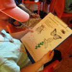Schüler löst ein Rätselblatt