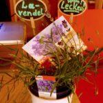 Lavendel-Deko zum Vortrag
