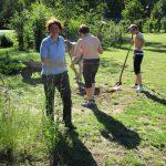 Umgriffarbeiten an der Bienen-InfoWabe, 23.06.2016, mit den Pfadfindern der DPSG St. Josef Bamberg unter Bienenfreundin Catharina Beyer